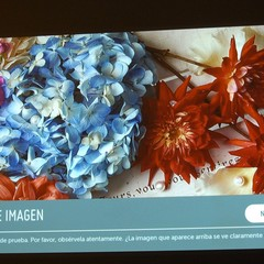 Foto 11 de 20 de la galería smart-laser-tv-hf80js en Xataka Smart Home