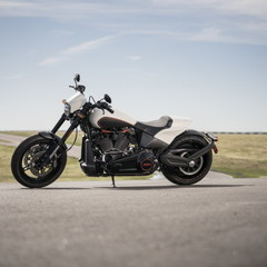 Foto 17 de 22 de la galería harley-davidson-fxdr-114-2019 en Motorpasion Moto