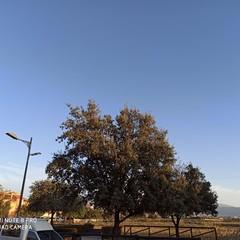 Foto 1 de 27 de la galería galeria-de-fotos-tomadas-con-el-redmi-note-8-pro en Xataka Android