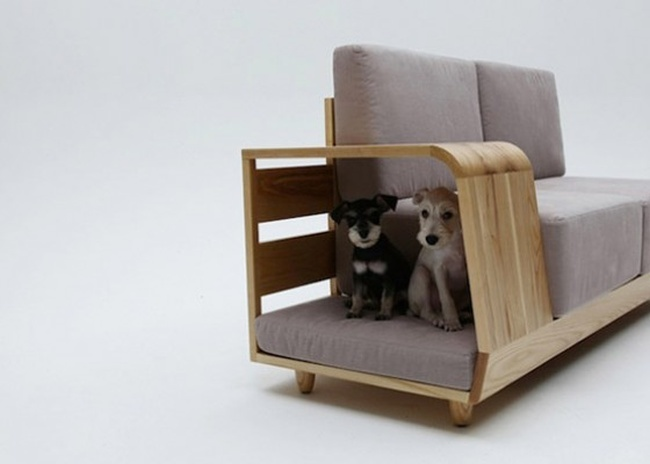 dog-house-sofa.jpg