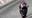 Motorpasión a dos ruedas: Jorge Lorenzo y Marc Márquez campeones del mundo de MotoGP y Moto2