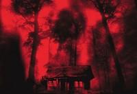 'Cabin Fever', el remake