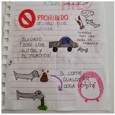 El entrañable y divertido manual de instrucciones que una niña deja a su tía, para que sepa cuidar de su perro en vacaciones
