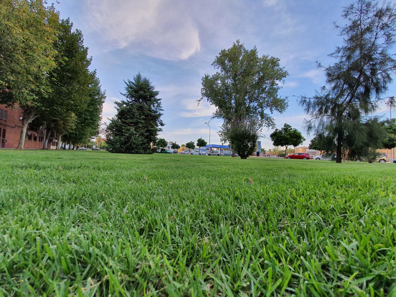Foto de Fotografías tomadas con el Samsung Galaxy Note 10+ (44/118)