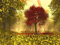 En qué invertir este otoño