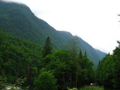 Colaboración entre Parques Nacionales y la Fundación Félix Rodríguez de la Fuente