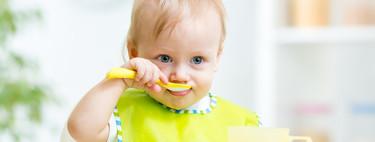 Baby Led-Weaning mixto: cómo combinar la alimentación guiada por el bebé con los triturados