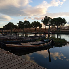 Foto 22 de 24 de la galería htc-u11-life-fotos-con-las-camaras en Xataka