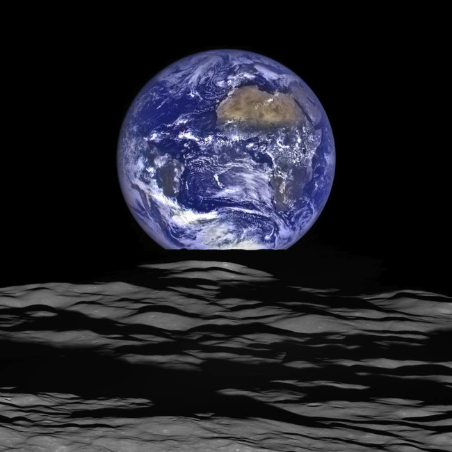 Earth And Limb