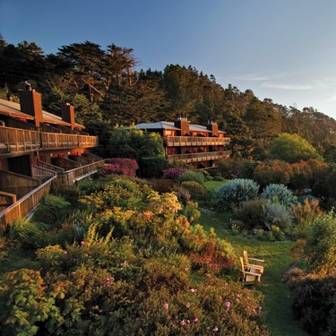 Tres hoteles veganos, pet friendly y amigables con el medio ambiente para hospedarte este 2020