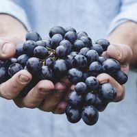 El vino tinto no es la única fuente de resveratrol: otras opciones más saludables