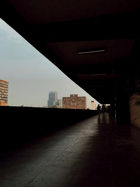 I had never noticed the lines that frame the main University City buildings at UNAM, and in my waiting time outside my classroom I decided to capture these lines.  Copyright: © Liliana  Navarrete , Mexico, Winner, National Awards, 2020 Sony World Photography Awards