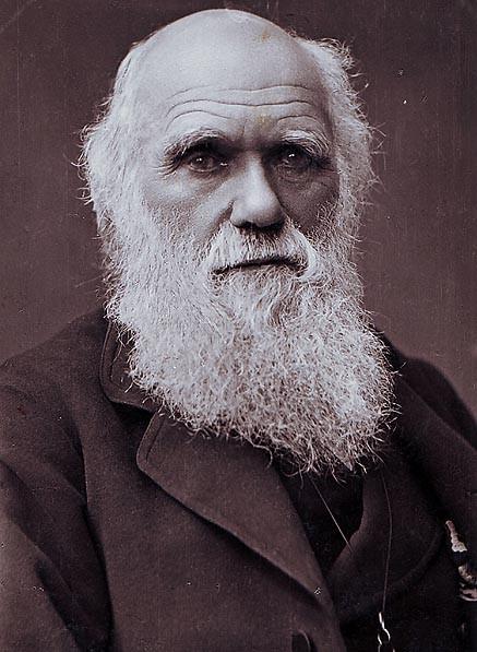 Charles Darwin Photograph By Herbert Rose Barraud 1881