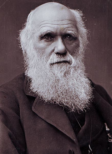 Charles Darwin Photograph By Herbert Rose Barraud 1881