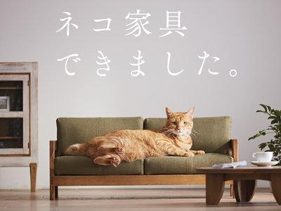 Japón ha lanzado una irresistible línea de muebles en miniatura para tu gato porque Japón
