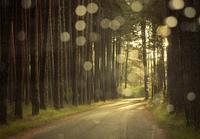 Se buscan las 7 Maravillas Rurales de España