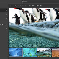 Adobe revela accidentalmente su nuevo software de edición de fotos