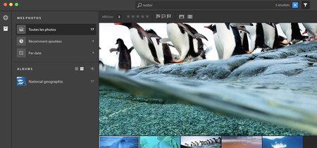 Adobe revela accidentalmente su nuevo software de edición de fotos