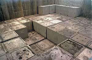 Un reactor nuclear que no genera residuos