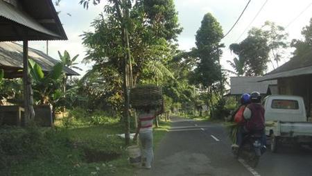 El interior de Bali: un viaje desde Nusa Dua hasta Batur