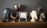 Zara Home y su nuena colección de caballos para el otoño