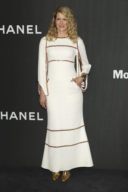 Laura Dern moma film red carpet