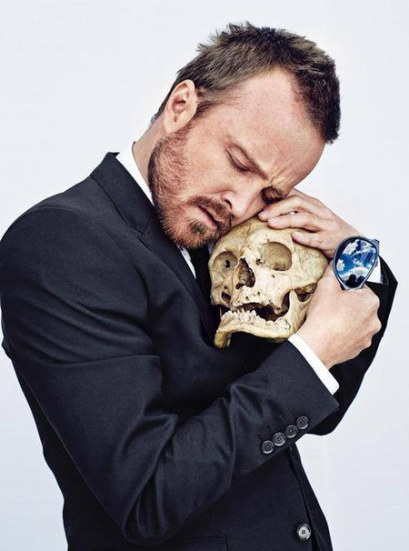 Aaron Paul Beard skull