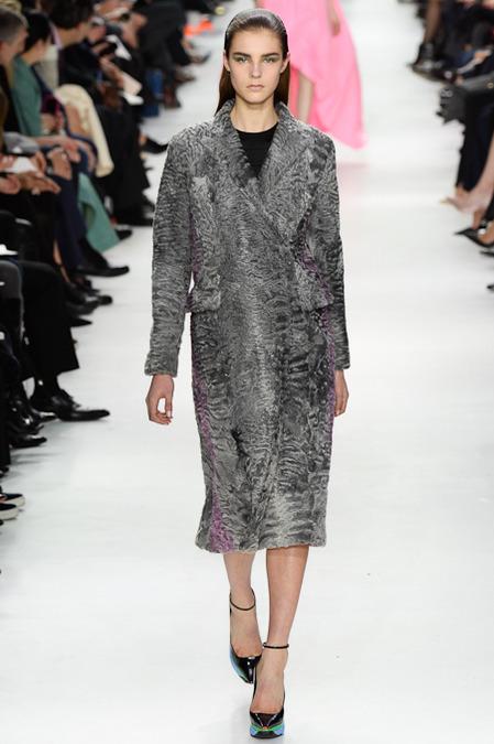 Foto de Christian Dior colección Otoño-Invierno 2014/2015 (28/47)