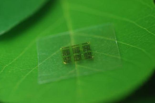Este chip es está hecho casi por completo de madera