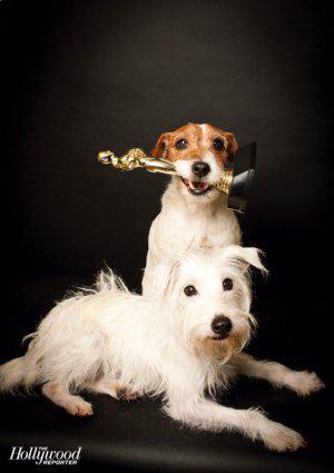 Foto de Fotos de Uggie, el perro de 'The Artist' (5/8)
