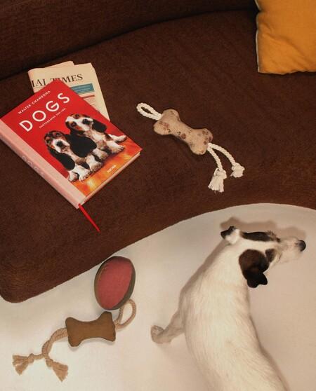 Mascotas Perros Zara Home