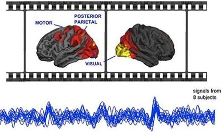 Cuando varias personas ven la misma película sus cerebros se sincronizan