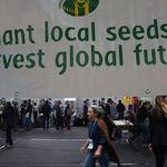 ¿Se está frenando la globalización?