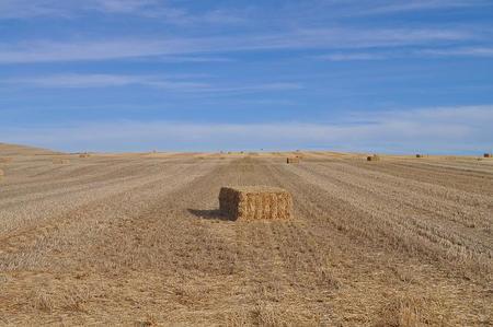 ¿Se ha agravado la brecha entre el norte y el sur de España?