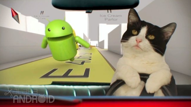 Imagen de la Semana, Nexus S Gatos