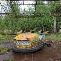 """El hongo de Chernóbil que nos descubrió una """"nueva forma de fotosíntesis"""" y que acabó en la Estación Espacial Internacional"""