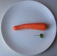 ¿Sirven las dietas milagro para adelgazar?