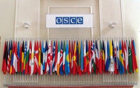 La OSCE no logra adoptar una posición común en defensa de las libertades en internet
