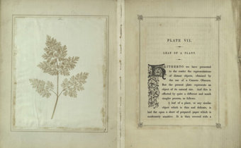 William Fox Talbot, pionero de la fotografía con sus dibujos fotogénicos
