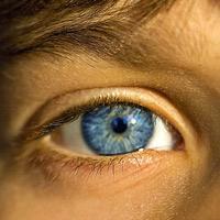 Webkit demuestra su potencial con sensores para detectar la mirada del usuario