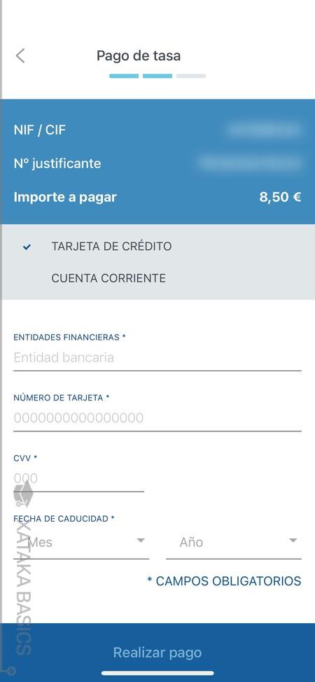 Datos Pago