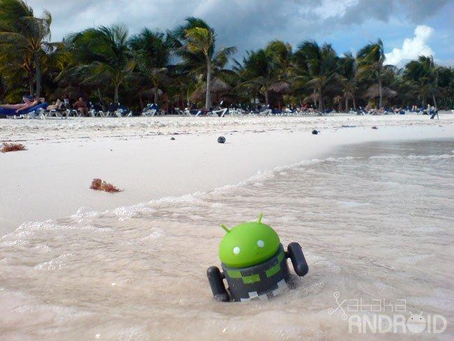 Android nadando en Riviera Maya