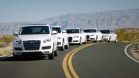 ¿Qué tal se venden los Clean Diesel en Estados Unidos?