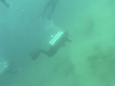 Así se ve y se escucha un terremoto de 5,7 grados bajo el agua
