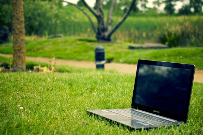 Laptop Notebook Grass Meadow
