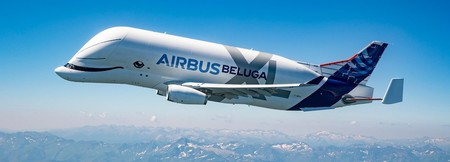 Belugaxl Firstflight 9