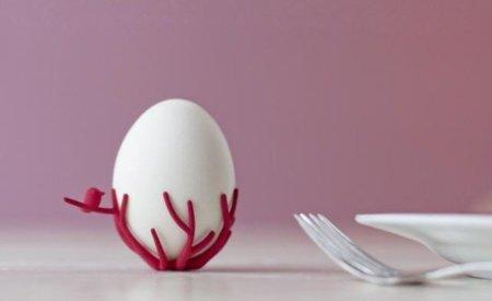 Pon tus huevos cocidos en un nido