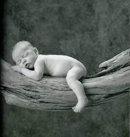 Conocer el sexo del bebé en sólo 6 semanas de embarazo