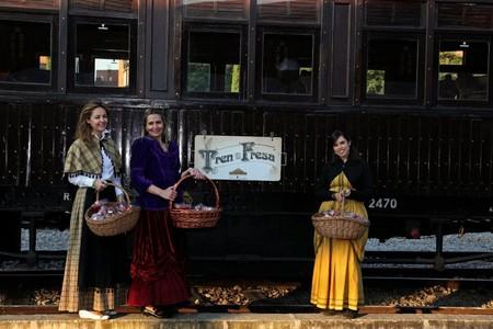 Tren De La Fresa 2017 2