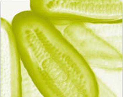 Alimentación y Salud, II Congreso Internacional de Ciencia y Tecnología de los Alimentos